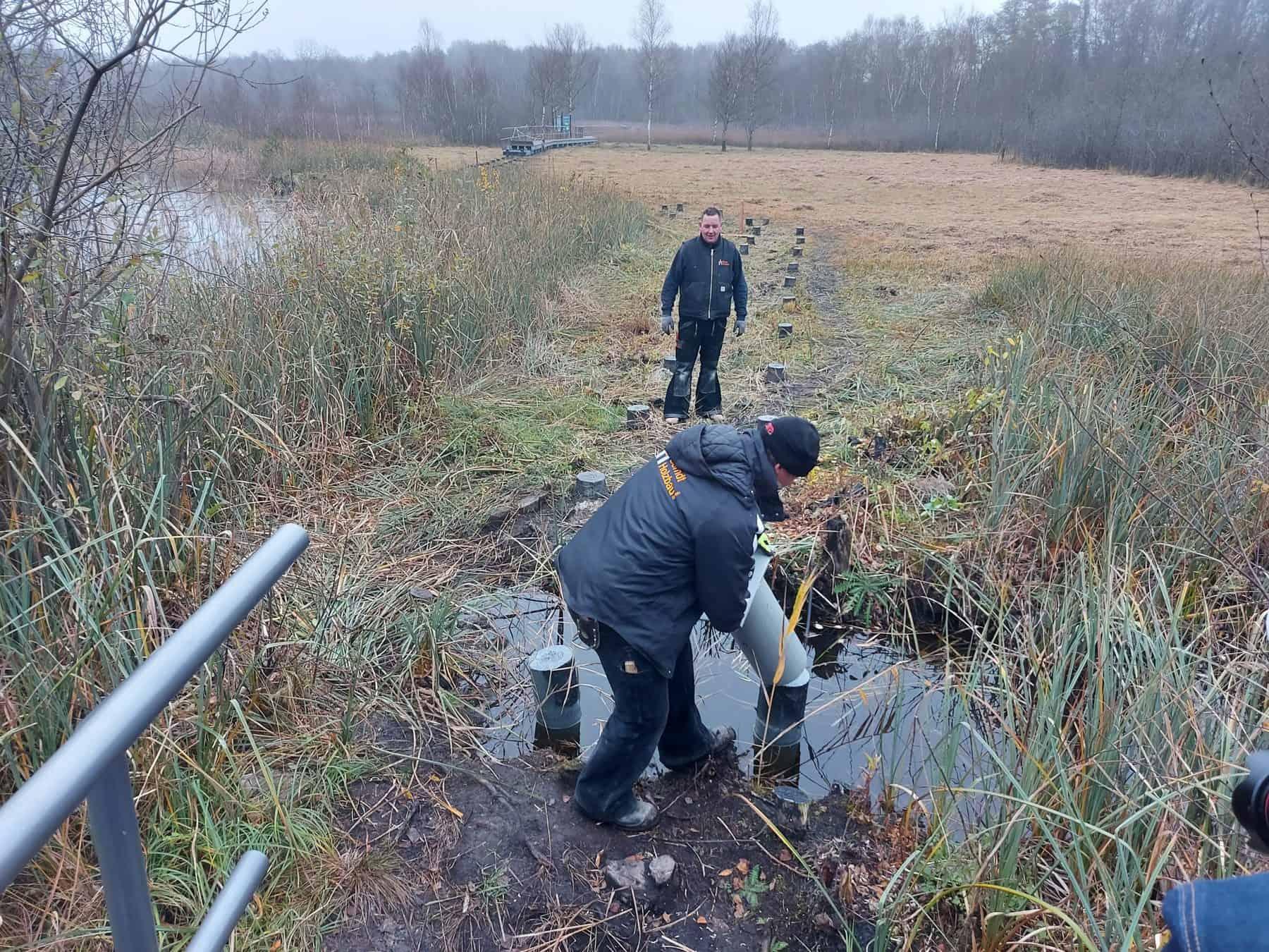 Moorerlebnispfad in Zarrentin am Schaalsee bald wieder begehbar